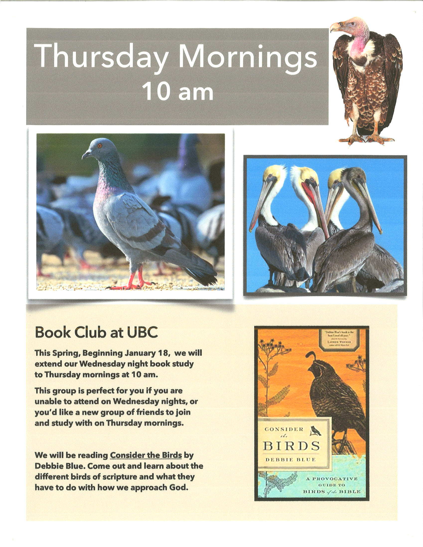 Birds-of-the-Bible-Book-Club